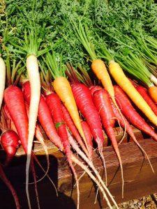 veggies picture
